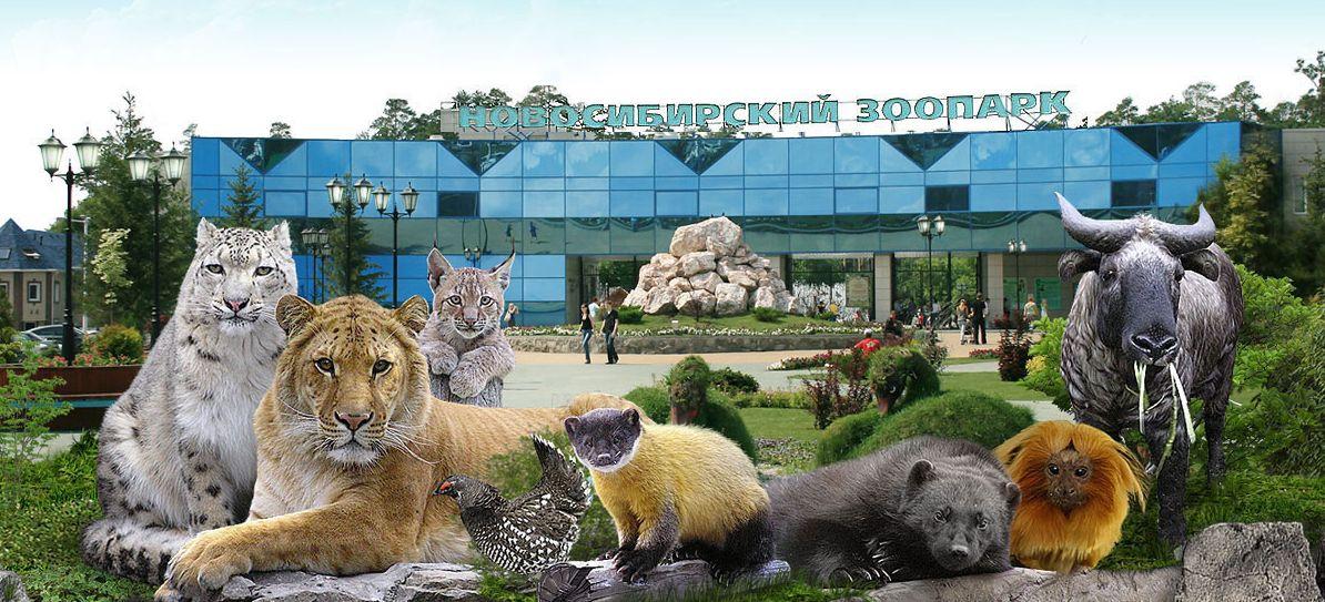 zoo.jpg?1494660503